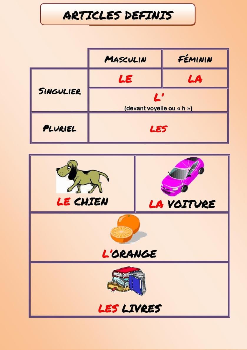 Rodzajniki określone, nieokreślone i cząstkowe - rodzajniki określone 1 - Francuski przy kawie