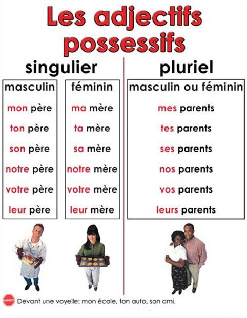 Zaimki przymiotne dzierżawcze - gramatyka 4 - Francuski przy kawie